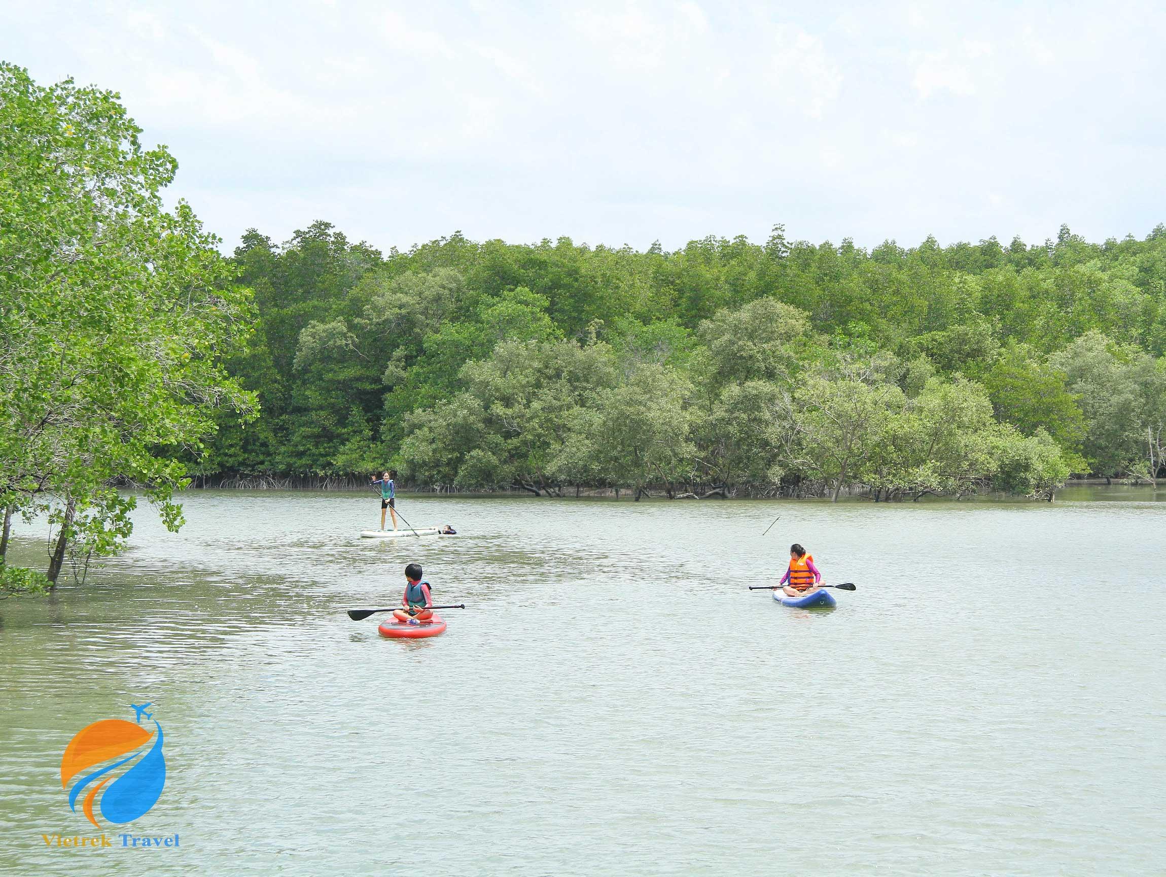 Tour chèo SUP Cần Giờ - Cung đường xuyên rừng ngập mặn